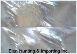 Elen Hunting & Importing Inc.